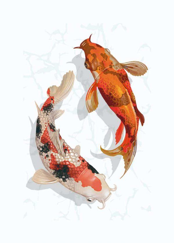 Ilustración PECES KOI, con margen, vertical