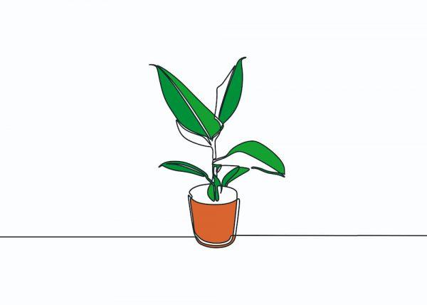 Ilustración Maceta