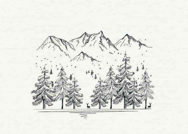 Ilustración Árboles Montañas Linea