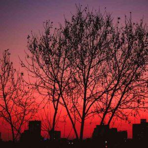 Fotografía Atardecer Rojo